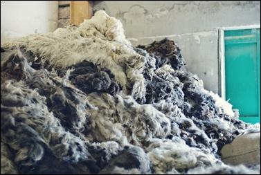 Woolstore
