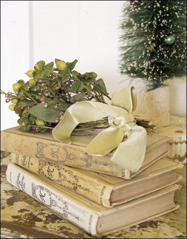 Detail-Books-mistletoe