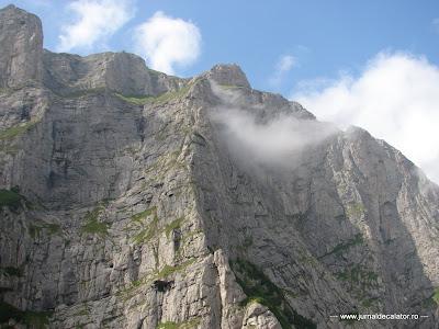 Valea Alba - Albisoara Branei (26).JPG