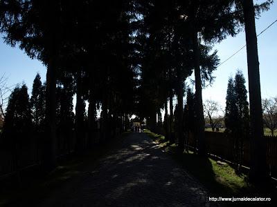 asajul de intrare in Manastirea Polovragi
