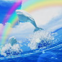 Beluga Ocean icon