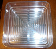 Sprouting trays - top view