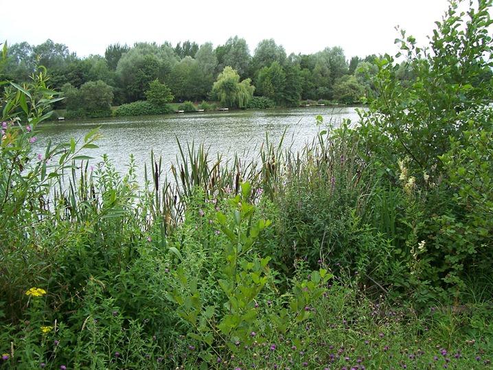Late lake