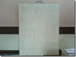Undecorated board