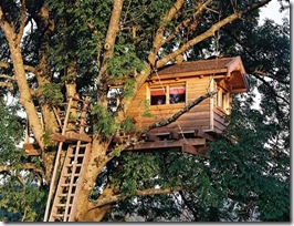 treehouse.2