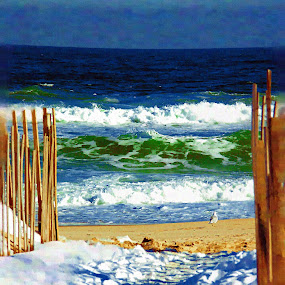 Snow and Sand by Cheryl Thomas - Landscapes Beaches ( water, sand, waves, snow, beach )