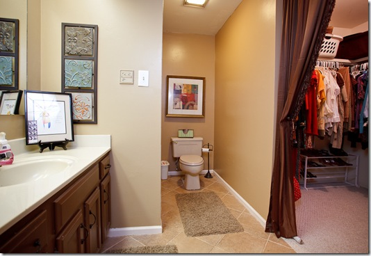 7 Reservoir Heights_master bath