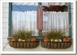 fall window boxes 09 #2