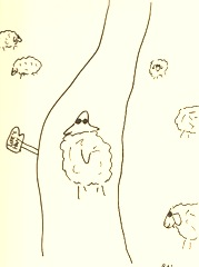 sheeplife'shighway