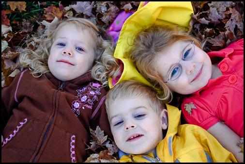 2009-11-03 Leaves 102