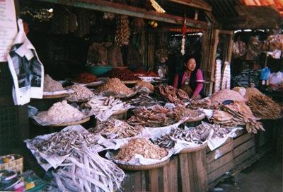 myanmar_pyin_u_lwin_fish_monger
