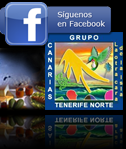 Grupo Tenerife Norte 2