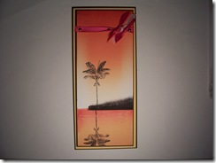 zindorf class tropical