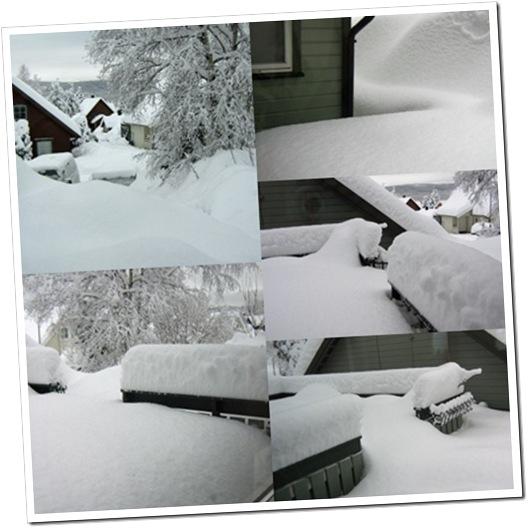 Vinterbilde 24-01-2009
