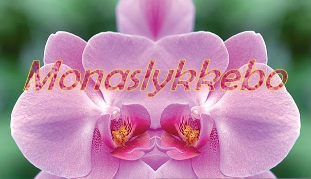 Monaslykkebo_header