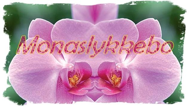 Monaslykkebo_header2