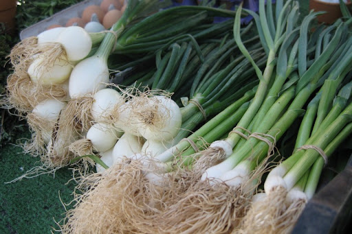Spring Onions and Green Garlic