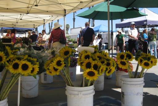 PB Farmers Market