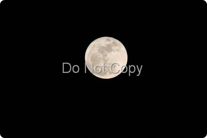 Liney Moon