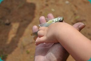 Sam's First Fishing Trip_09 05 09_0731