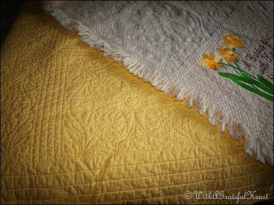 Afghan and Quilt