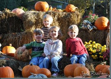 Group Pumpkin