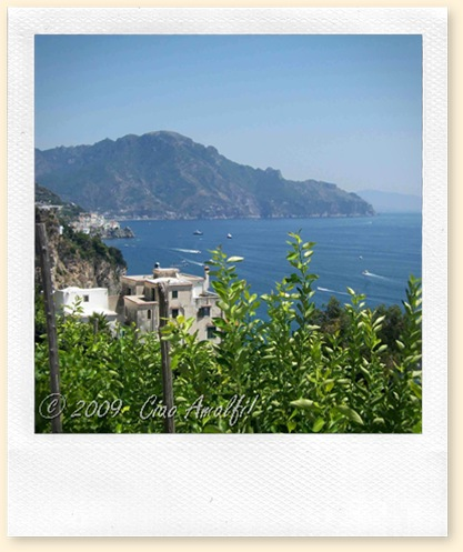 Ciao Amalfi Coast Blog Lemon Groves View