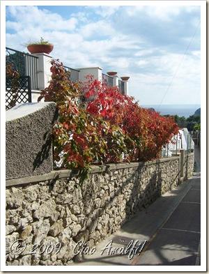 Ciao Amalfi Coast Blog Autumn Capri Street
