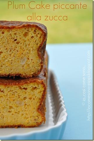 Plum Cake piccante alla zucca4