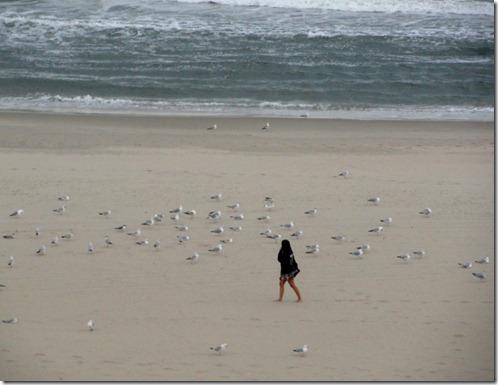 virginia beach 2011 041