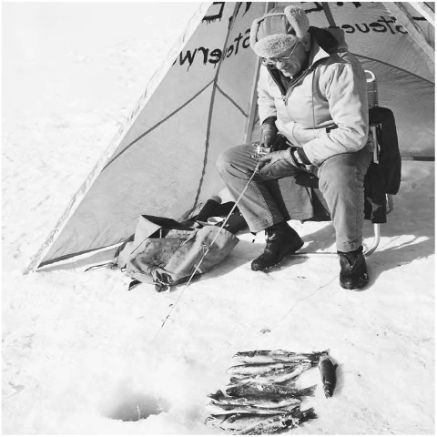 A man ice fishing in Montana. Because of the unique thermal expansion properties of water, ice forms at the top of a lake rather than the bottom, thus allowing marine life to continue living below its surface during the winter.