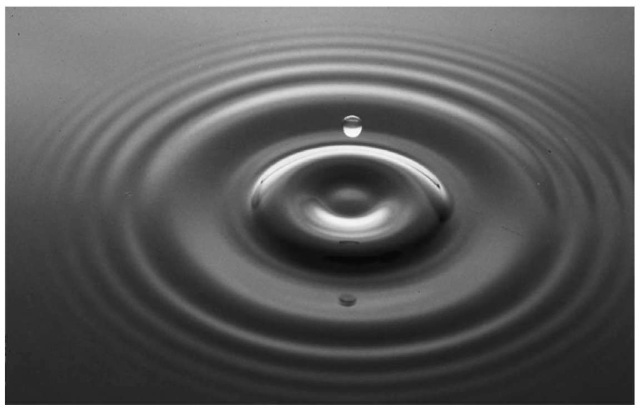 Transverse waves produced by a water droplet penetrating the surface of a body of liquid.