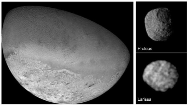 Voyager imaging of Triton and newly discovered satellites 1989N1 and 1989N2. (Left) [JPL P34687]. This Voyager 2 image has a resolution of 10 km. The South Pole, which is sunlit throughout the current season, is at bottom left. The absence of large impact craters suggests that Triton's surface has been renewed within the last billion years. (Upper right) [JPL P34727]. Voyager 2 image of Neptune's satellite 1989N1 (Proteus) at a resolution of 2.7 km. Its average diameter is 208 km. Its albedo is only 6%, compared to Triton's 76%, and its color is gray. (Lower right) [JPL P34698]. Voyager 2 image of 1989N2 (Larissa), Neptune's fourth largest satellite (mean radius 95 km), at a resolution of 4.2 km. It also has a low albedo (about 5%) and seems to have craters 3050 km in diameter. This figure is available in full color at http://www.mrw. interscience. wiley.com/esst.