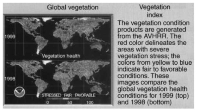 Vegetation Index: Vegetation condition products are generated from the AVHRR. The red color delineates the areas that have severe vegetative stress; the colors from yellow to blue indicate fair to favorable conditions. These images compare the global vegetative health conditions for 1999 (top) and 1998 (bottom). This figure is available in full color at http://www.mrw.interscience.wiley.com/esst.