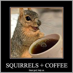 demotivational-posters-squirrels-coffee