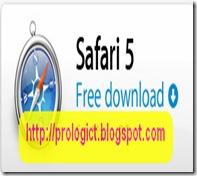 safari-5 ico