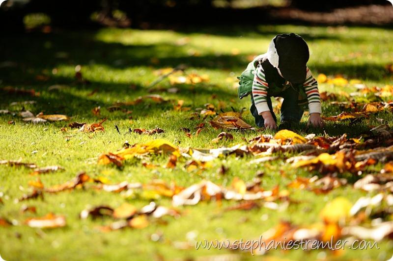 LyndenFamilyPhotographerF11-1-09Colby-102