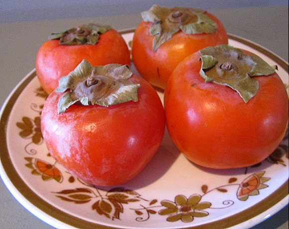 Pretty Persimmons