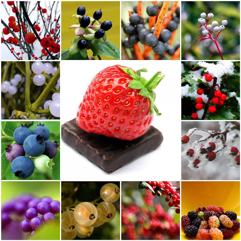 Assorted Berry Photo Mosaic