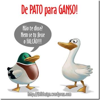 De-Pato-para-Ganso