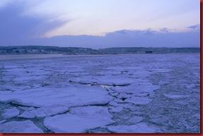 2011-02-05 Drift Ice 27