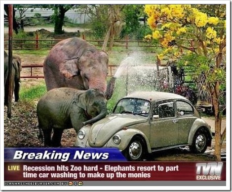 Funny Car Washing With Elephants.