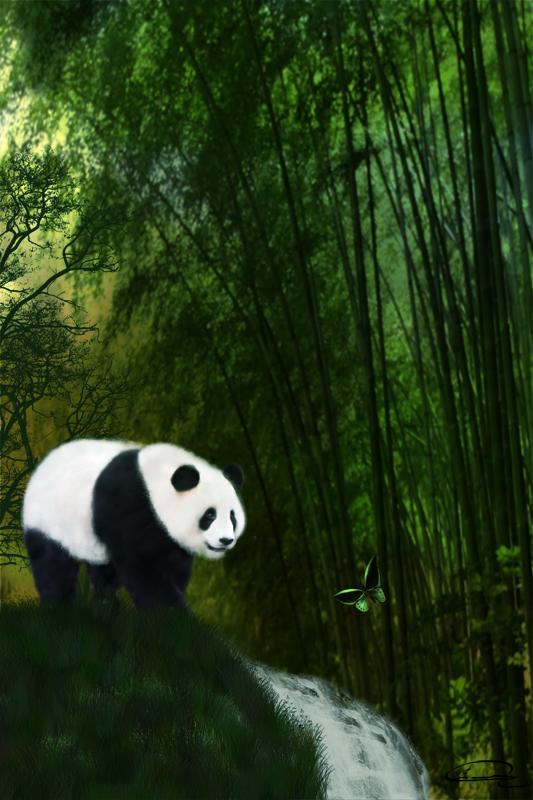 panda bamboos emma alvarez