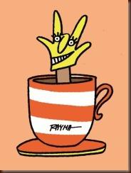 cafe-sorpresa_