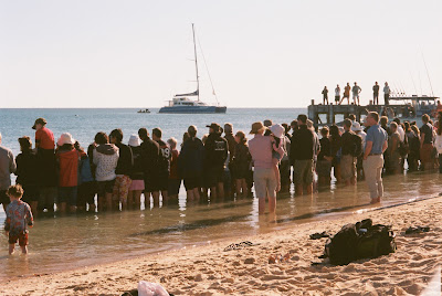 Lining up to view the dolphins.