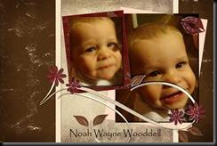 NoahWayneWEB