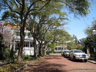 A typical street scene in historic Charleston.
