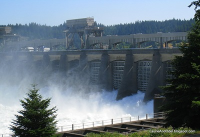 The Columbia River boils through the release gates at Bonneville Dam