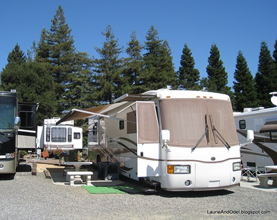 Our roomy site at the  Napa Elks Lodge