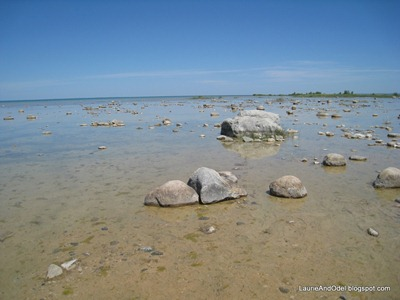 Waters of Grand Traverse Bay